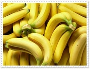 VERT FRAIS bananes Cavendish